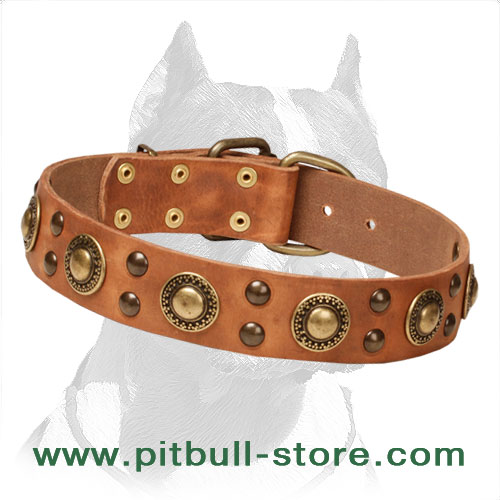 Leather collar, noble style