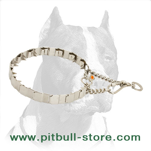 Stainless  steel dog neck-tech collar