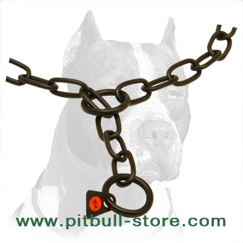 Special label of quality, dog choke collar