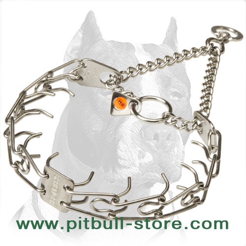 Dog pinch collar, stainless steel