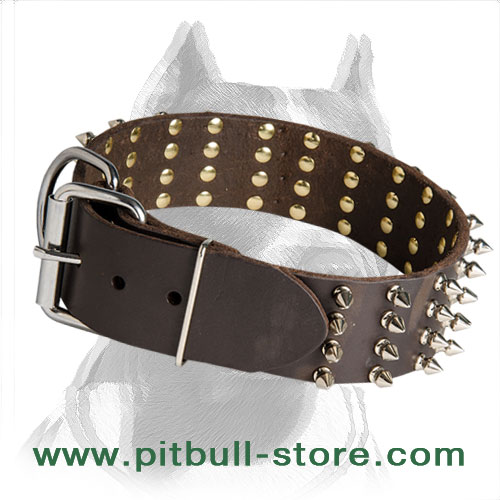 Dog collar for Pitbulls, rust resistant hardware