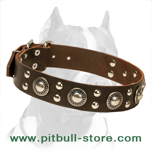 Leather collar with nickel-plated hardware
