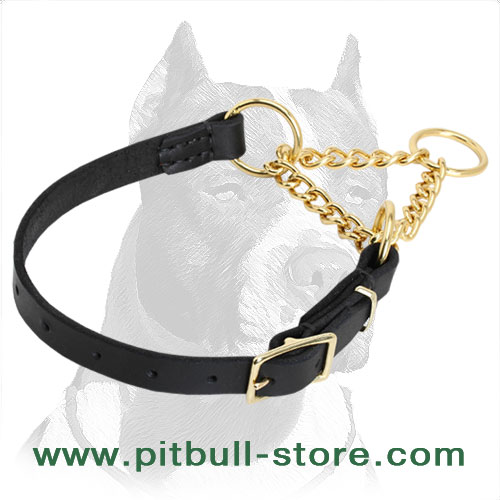 Dog martingale collar of genuine cowhide