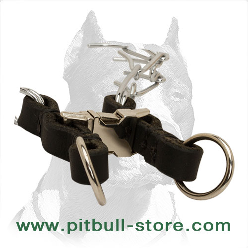 Pinch dog collar with 2 O-rings