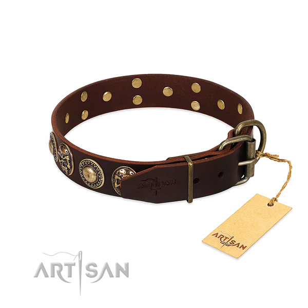 Handy use leather collar with embellishments for your dog
