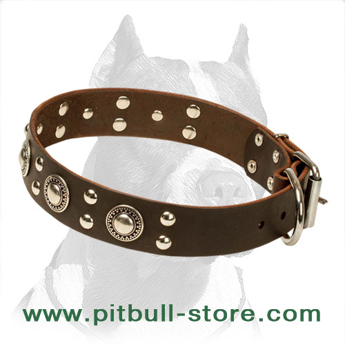 Pitbull leather collar,     handmade design