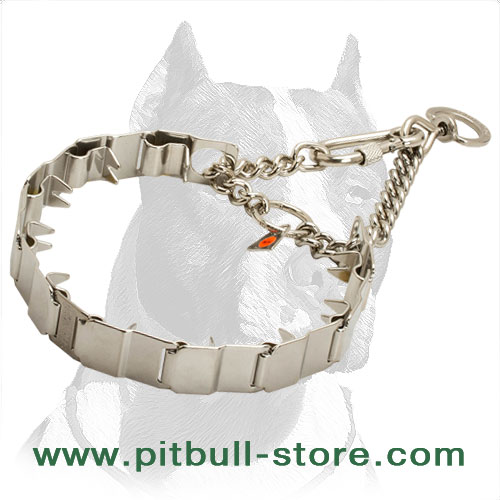 HS-Germany dog stainless steel collar with pinches
