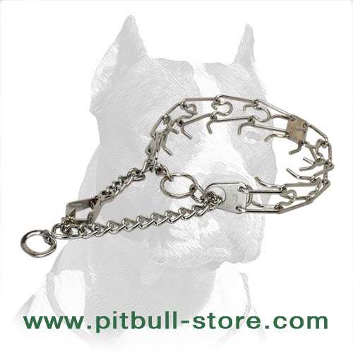 Dog pinch collar with 2 O-rings