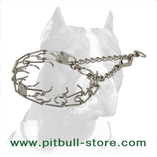 Dog prong collar with adjustable links