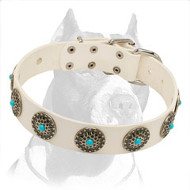 White Leather Dog Collar for Pitbull Exclusive Hand-Made Design