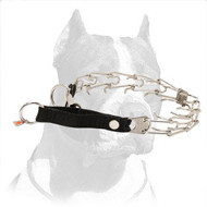 Chromium-Plated Pitbull Dog Pinch Collar