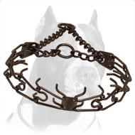 Best Controlling Pitbull Dog Pinch Collar