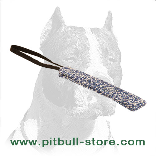 Pitbull puppy training tug of eco-    friendly French linen