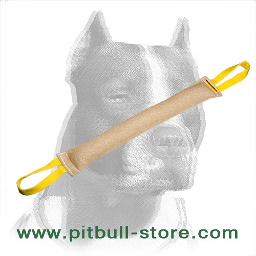 Strong dog bite tug for training Pitbulls