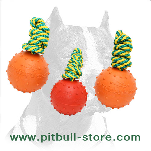 Solid rubber ball with     nylon string for Pitbull breed training