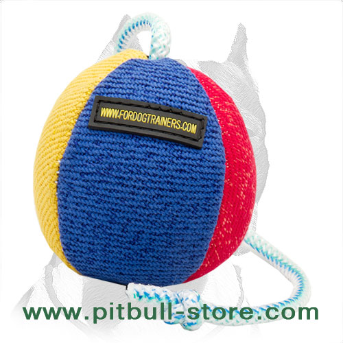 Training ball for Pitbull stitched variegated surface
