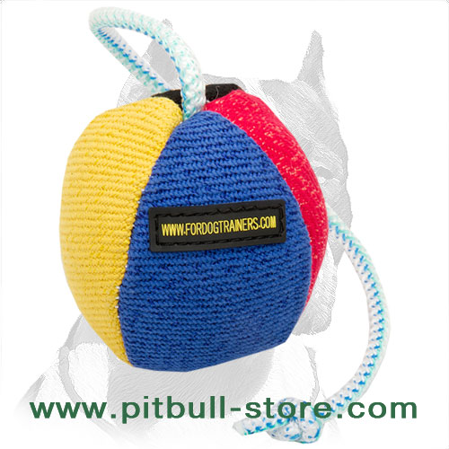 Training ball for Pitbull stitched colorful surface