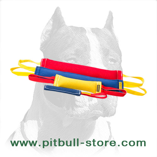 Pitbull training set of French linen tags