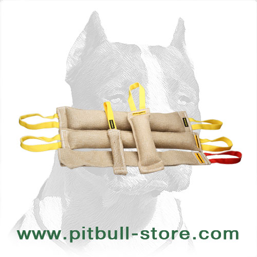 Jute dog training tugs for retrieve skills development