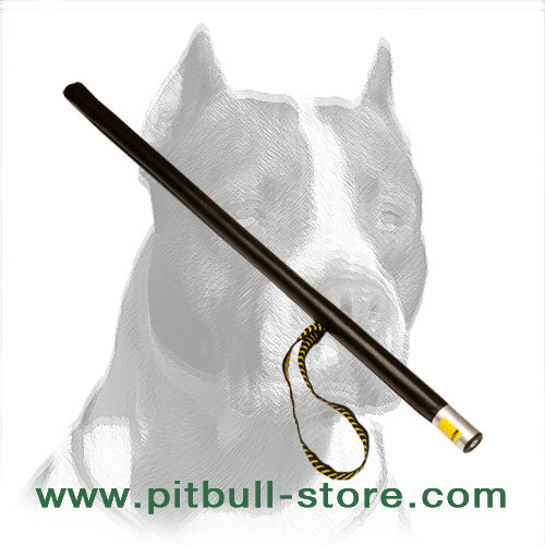 Training stick for Pitbull breed training