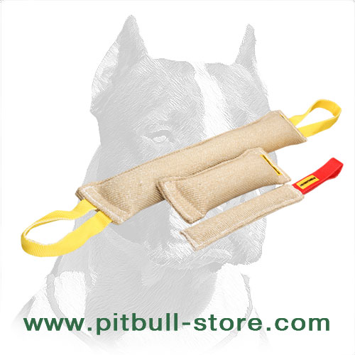 3 jute tugs for Pitbull's playtime