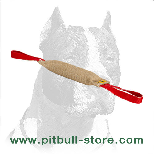 Dog bite training tug for Pitbulls