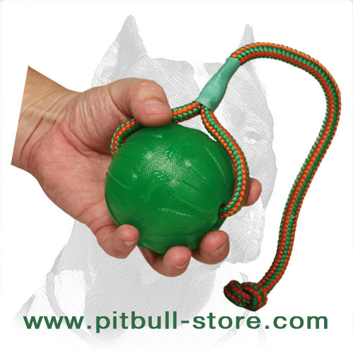 Pitbull dog ball of nontoxic stuff