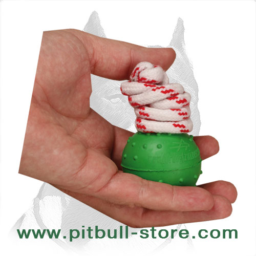Pitbull dog ball, solid inside