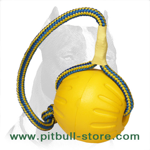 Dog ball mfor Pitbull indoor and outdoor activity