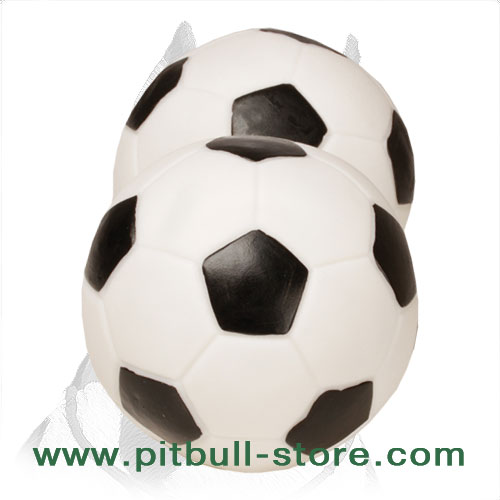 Pitbull dog squeaking ball of rubber