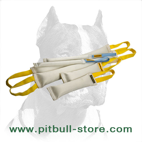 Set of 6 fire hose dog training tugs
