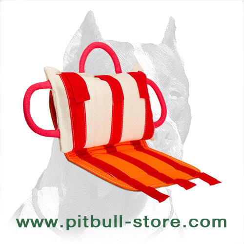 Pitbull training bite pillow with     genuine leather cover