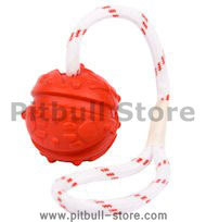 Similar to Everlasting Fun Ball on Rope for Pitbull or else dog