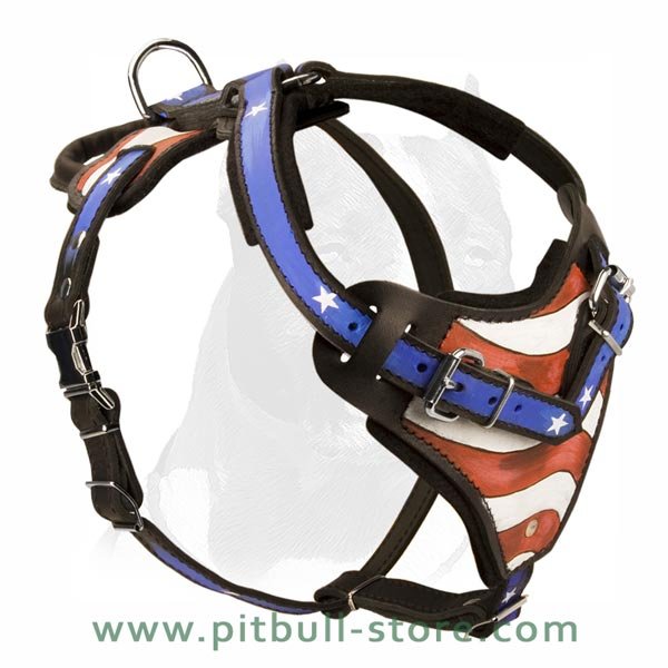 Safe Dog Harness with Extra Handle