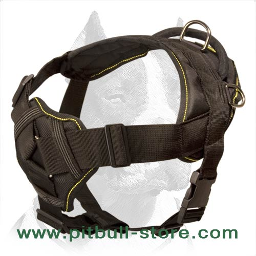 Comfortable Harness of Nylon