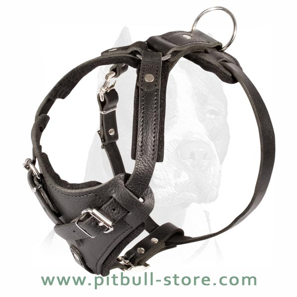 Light weight Harness for Training