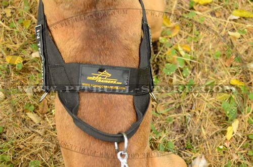 Professional working Dog Harness