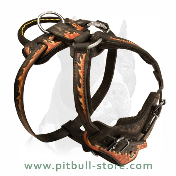 Leather Harness with Soft Padding
