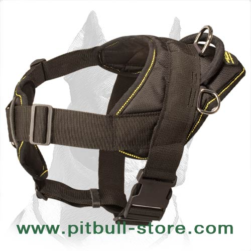 Nylon Harness for Pitbull