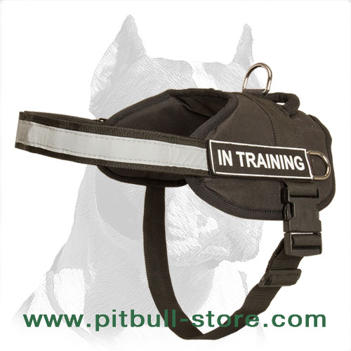 Nylon harness for Pitbull extra strong material