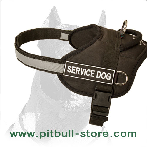 Harness nylon for Pitbull with ID patches