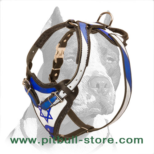 Leather dog harness with thick padding