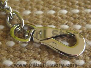 hs couplet dog-leash closeup for Large Breeds