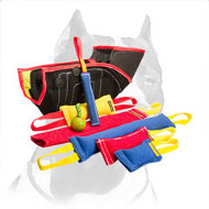 'All Inclusive' Pitbull Dog Training Set