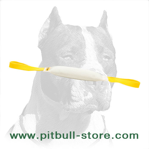 Pitbull Fire Hose Dog Bite Tug for Successful Training