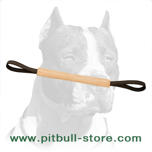 Genuine Leather Pitbull Dog Training Bite Tug