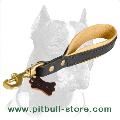 Stitched Pitbull Dog Leash Short Length for Better Control