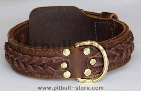 pitbull terrier leather dog collar