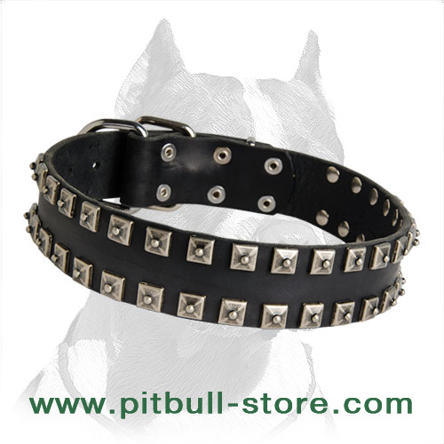 Shiny Leather Pitbull Dog Collar Unususal Design