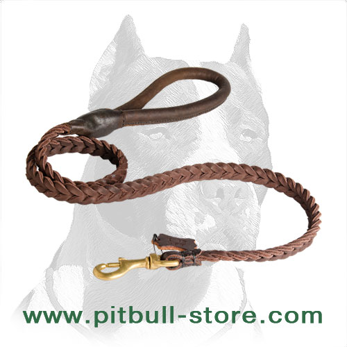 Amazing Design Pitbull Dog Leash with Smoothed Handle